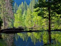 Merced River, Yosemite NP