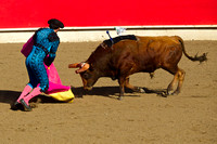 Portuguese (Bloodless) Bullfight