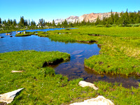 Meadow and Brook, Sierra Nevada